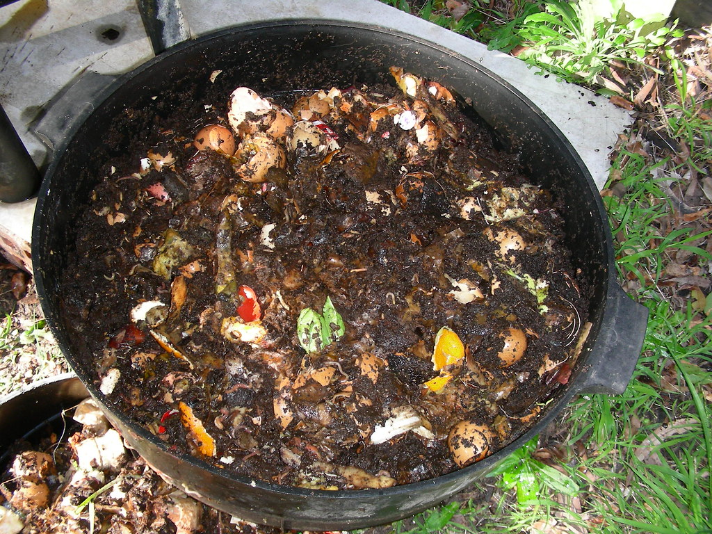 Compost Workshop – Leigh contact details