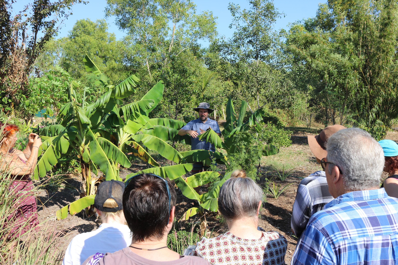 Banana Circle Workshop
